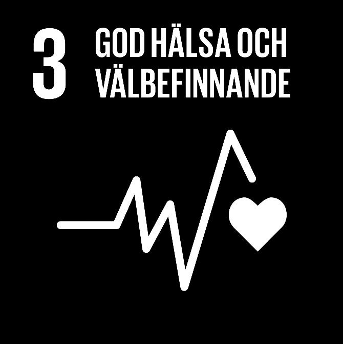 FN:s 17 globala hållbarhetsmål: 3 god hälsa och välbefinnande
