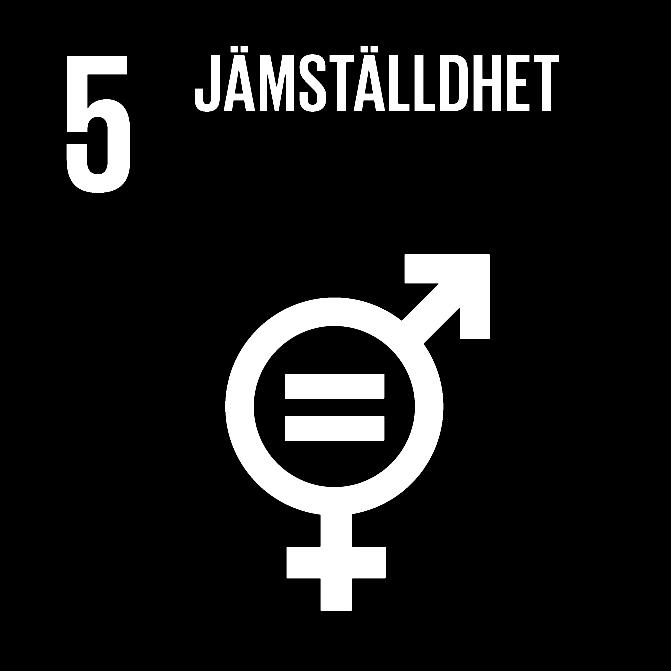 FN:s 17 globala hållbarhetsmål: 5 Jämställdhet