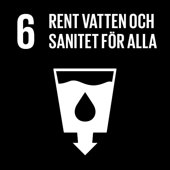 FN:s 17 globala hållbarhetsmål: 6 Rent vatten och sanitet