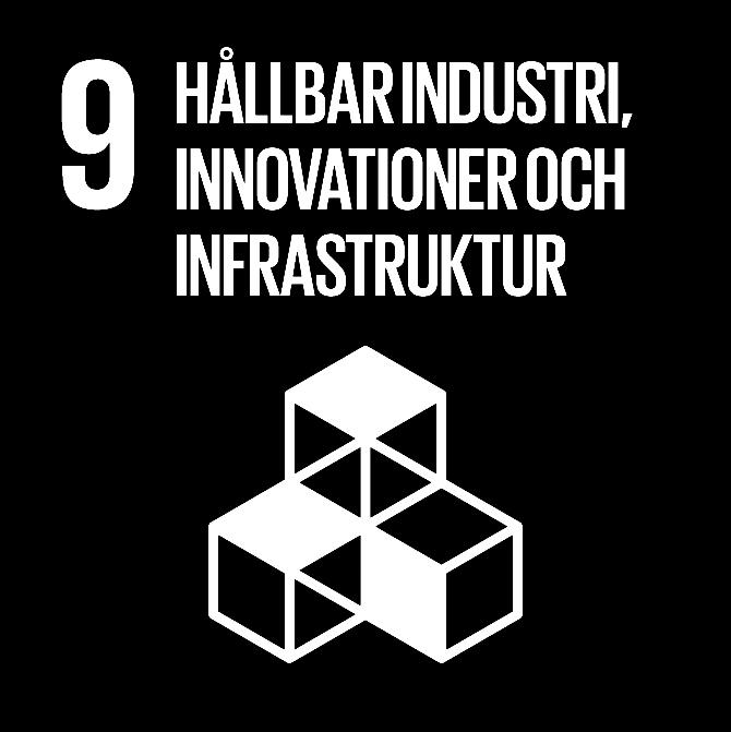 FN:s 17 globala hållbarhetsmål: 9 Hållbar industri, innovationer och infrastruktur