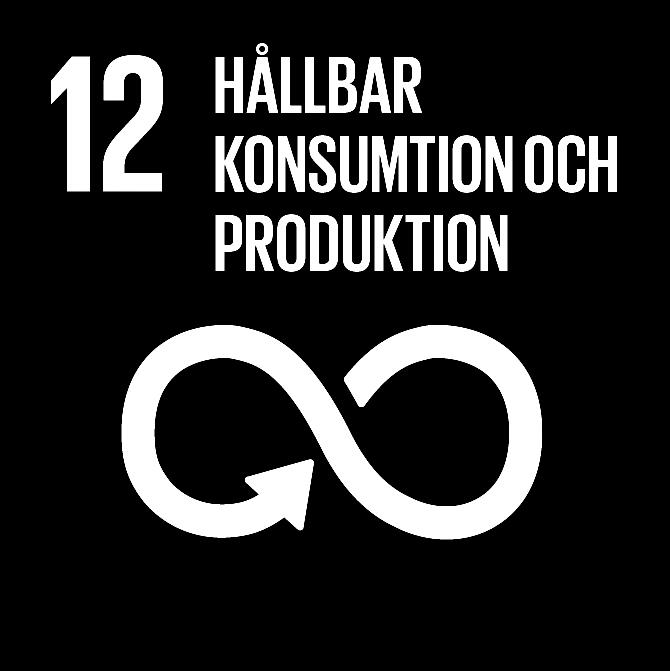 FN:s 17 globala hållbarhetsmål: 12 Hållbar konsumtion och produktion