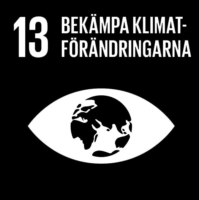 FN:s 17 globala hållbarhetsmål: 13 Bekämpa klimatförändringen