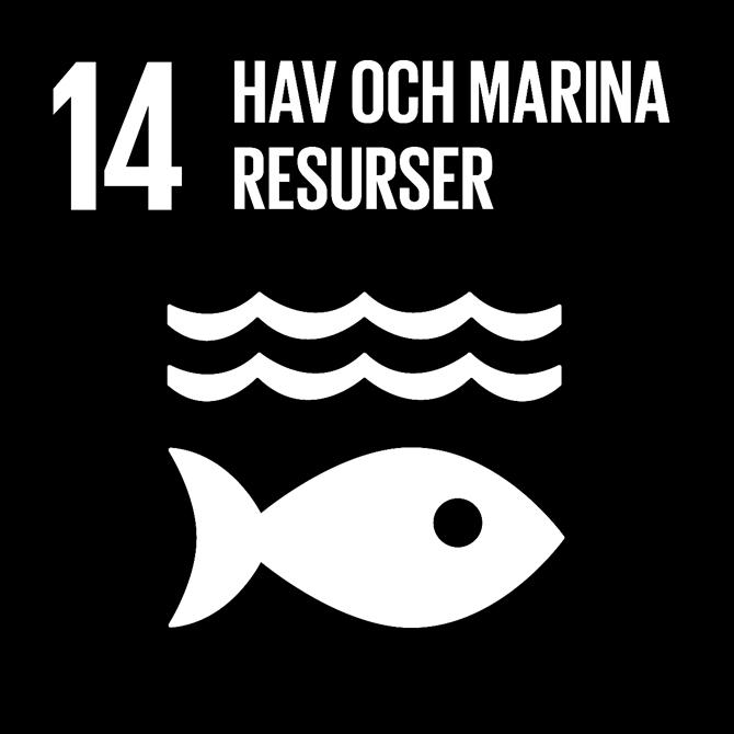 FN:s 17 globala hållbarhetsmål: 14 Hav och marina resurser