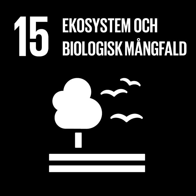 FN:s 17 globala hållbarhetsmål: 15 Ekosystem och biologisk mångfald